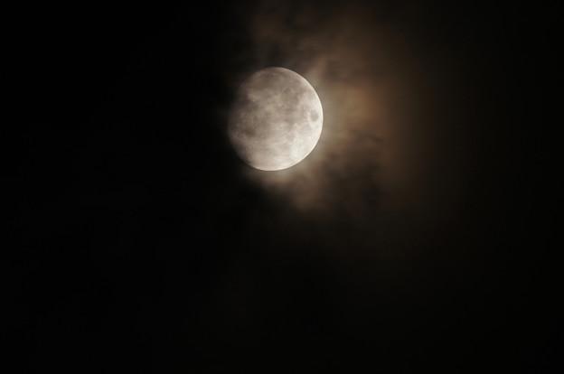飛び出てきそうな朧月
