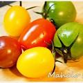 写真: ポップな色のミニトマト