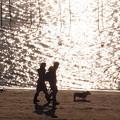 Photos: 1700_夕映えの浜辺