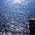 2000_京浜運河の輝き