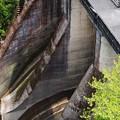 Photos: ダムを駆ける