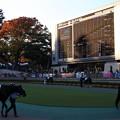 Photos: 最終レース