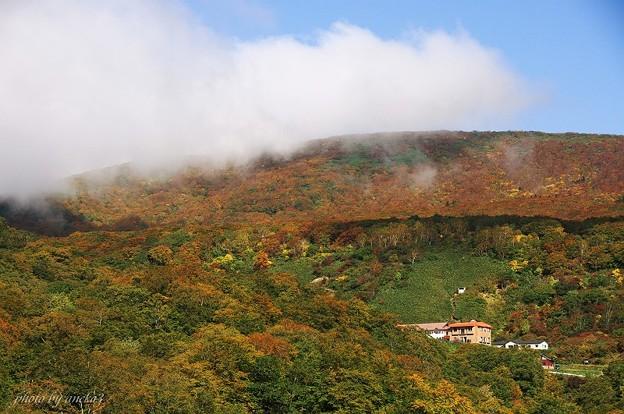駒ケ岳温泉付近の紅葉