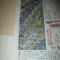 20130427 こいのぼりフェスタ1000by朝日新聞