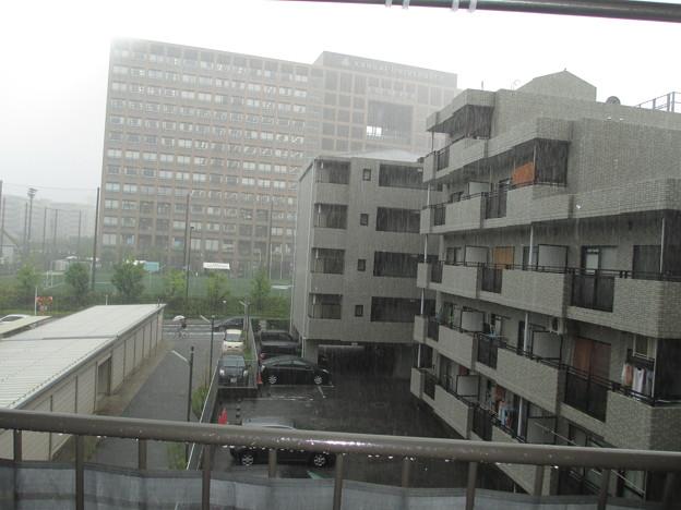 20130903 14時半頃の土砂降りの雨