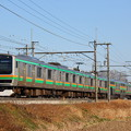 Photos: E231系普通上野行き