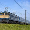 EF65-1135 #9242