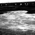 Photos: 池の水抜き