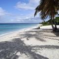 写真: ドミニカ共和国2