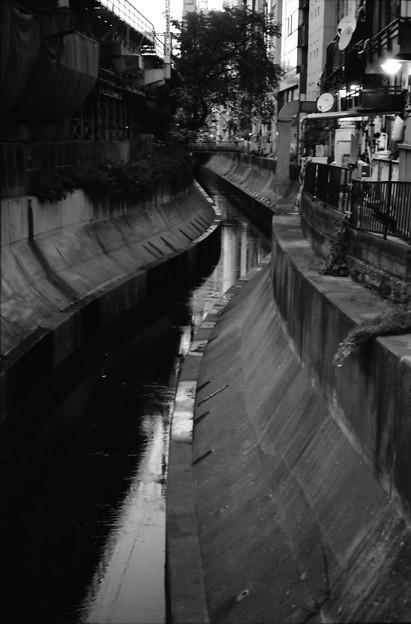 渋谷のどぶ川
