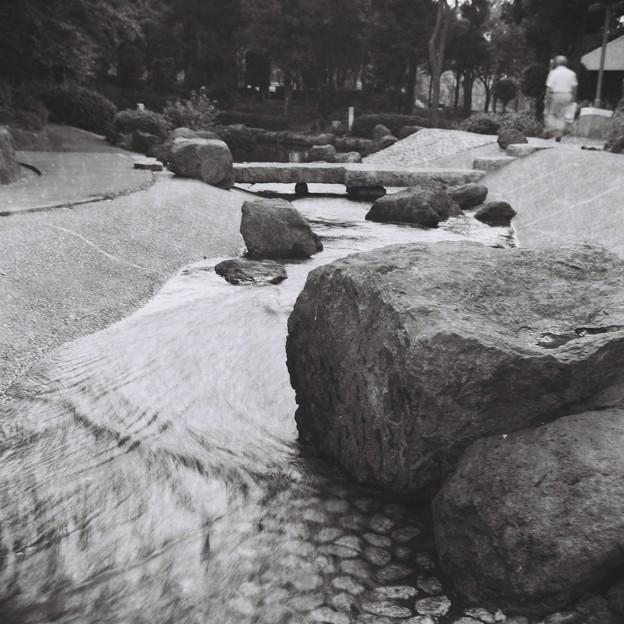 リコーフレックスで岩