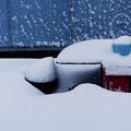 雪の日 2