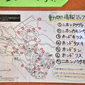 Photos: フォレストパークあだたら004