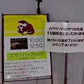 Photos: notojima121208001