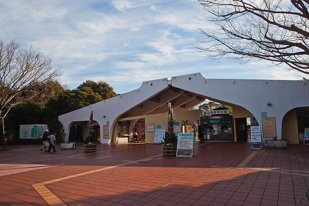 写真: hamamatsu130101001