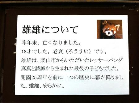 ichikawa120103999
