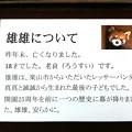 写真: ichikawa120103999