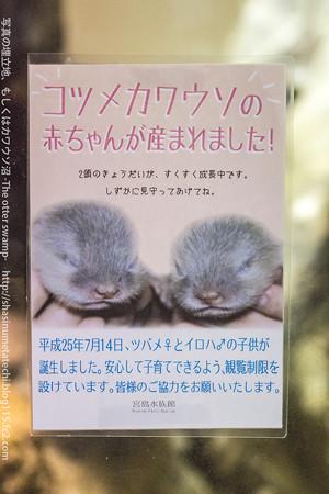 miyajima130917003