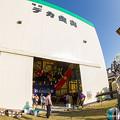Photos: 珠洲デカ曳山