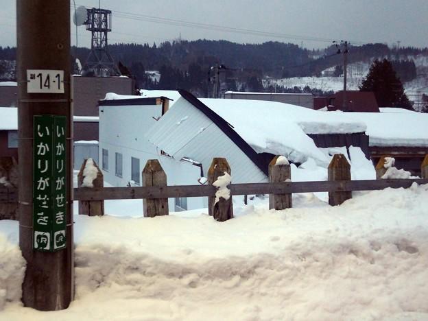 Photos: 雪に潰された・・・ 車窓