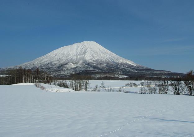 快晴の蝦夷富士