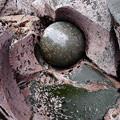 かんのんの浜のポットホールと溶岩ボール
