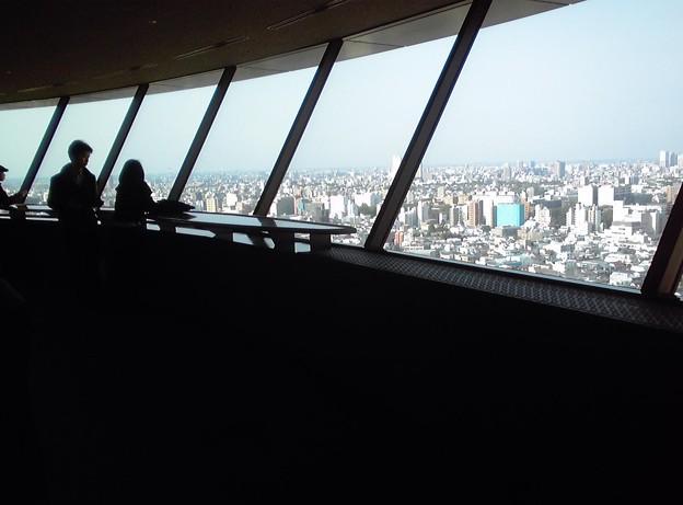 文京区役所 25階展望室からの眺望
