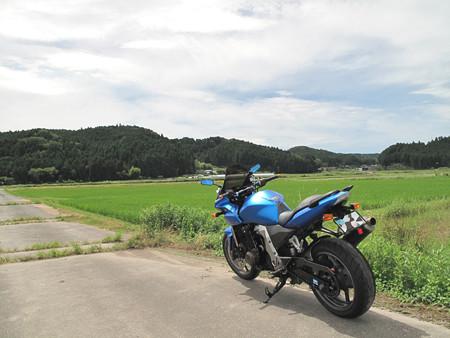 IMG_6321 作手地区水田