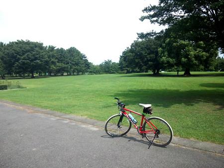 SH3I0465 庄内緑地公園
