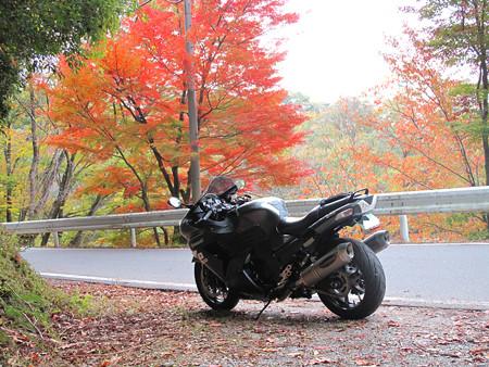 IMG_7061 三河湖畔