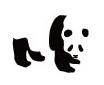 写真: panda3