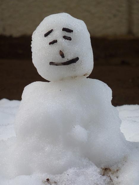 写真: 初めての雪だるま?