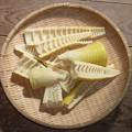 写真: 竹の旬