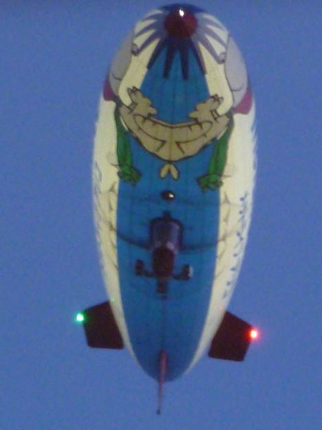 写真: 飛行船の「お腹」