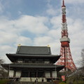 写真: 増上寺と東京タワー