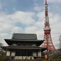 Photos: 増上寺と東京タワー