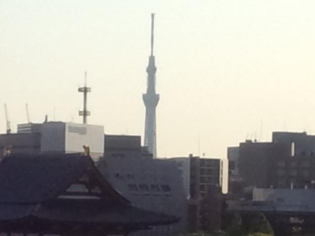 Photos: 墨田区にレンズを向けて…