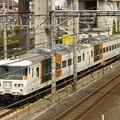JR東日本185系