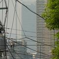 写真: 白い巨塔