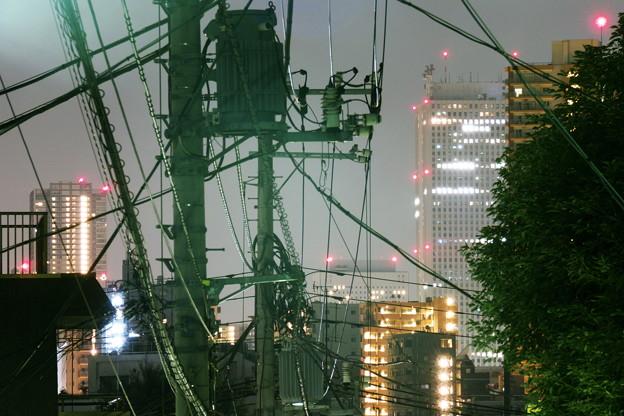 Photos: 「自然の展望台」にて(2)