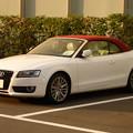 Sunset Audi