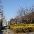 Photos: 下り坂の手前にて