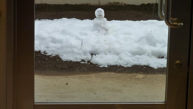 初めての雪だるま?
