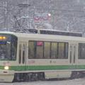 写真: 大雪の中を走る?