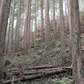 写真: 201210-04-011PZ