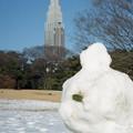 写真: 201212-02-024PZ