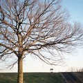写真: 201302-02-022PZ