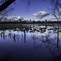 写真: 氾濫原 ー オックスフォード