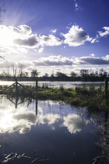 氾濫原 ー オックスフォード