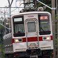Photos: 6600列車